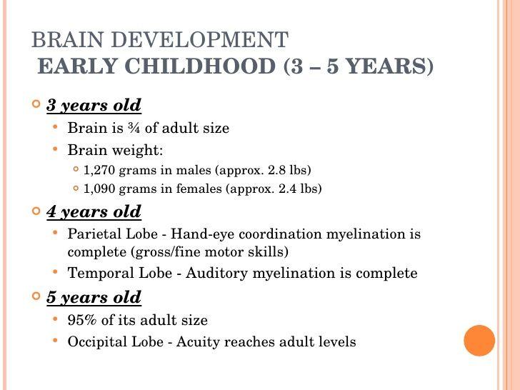 BRAIN DEVELOPMENT EARLY CHILDHOOD (3 – 5 YEARS) .