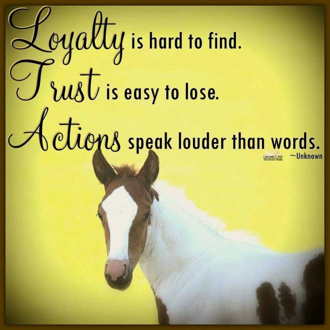 Pin By Lou Purchase On Horse Mafia Quotes