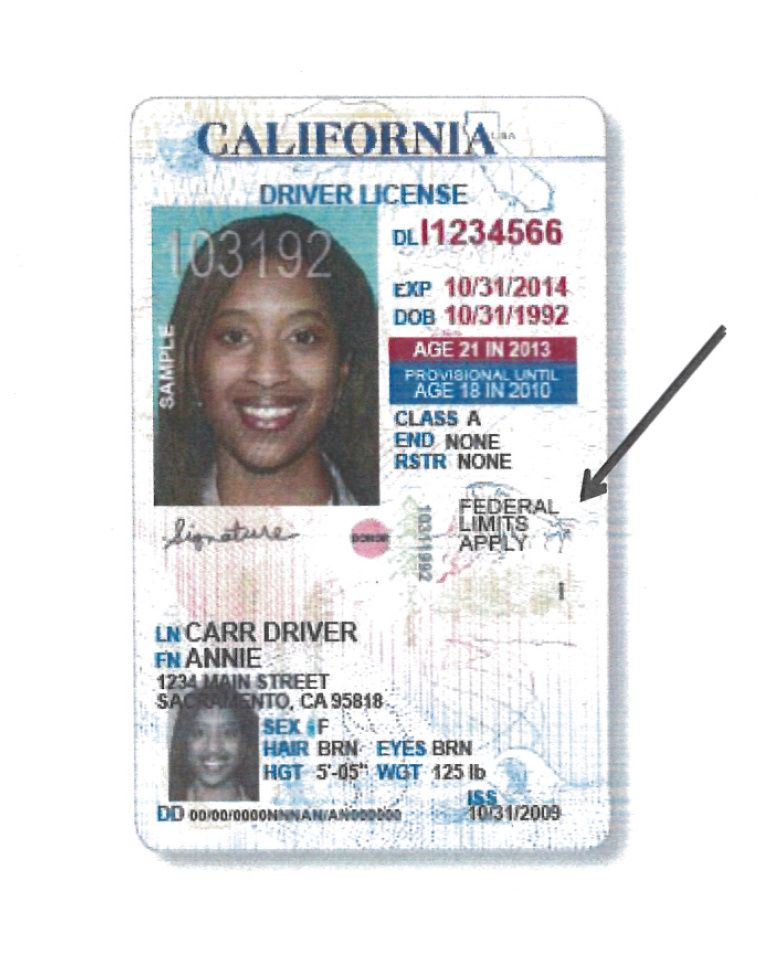 California Dmv To Move Forward With Immigrant DriverS Licenses
