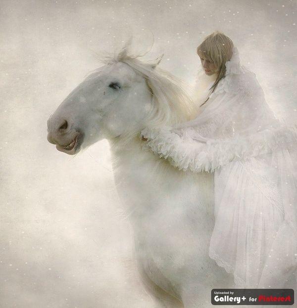 White Horse Totem Light Sun Day Vitality Illumination