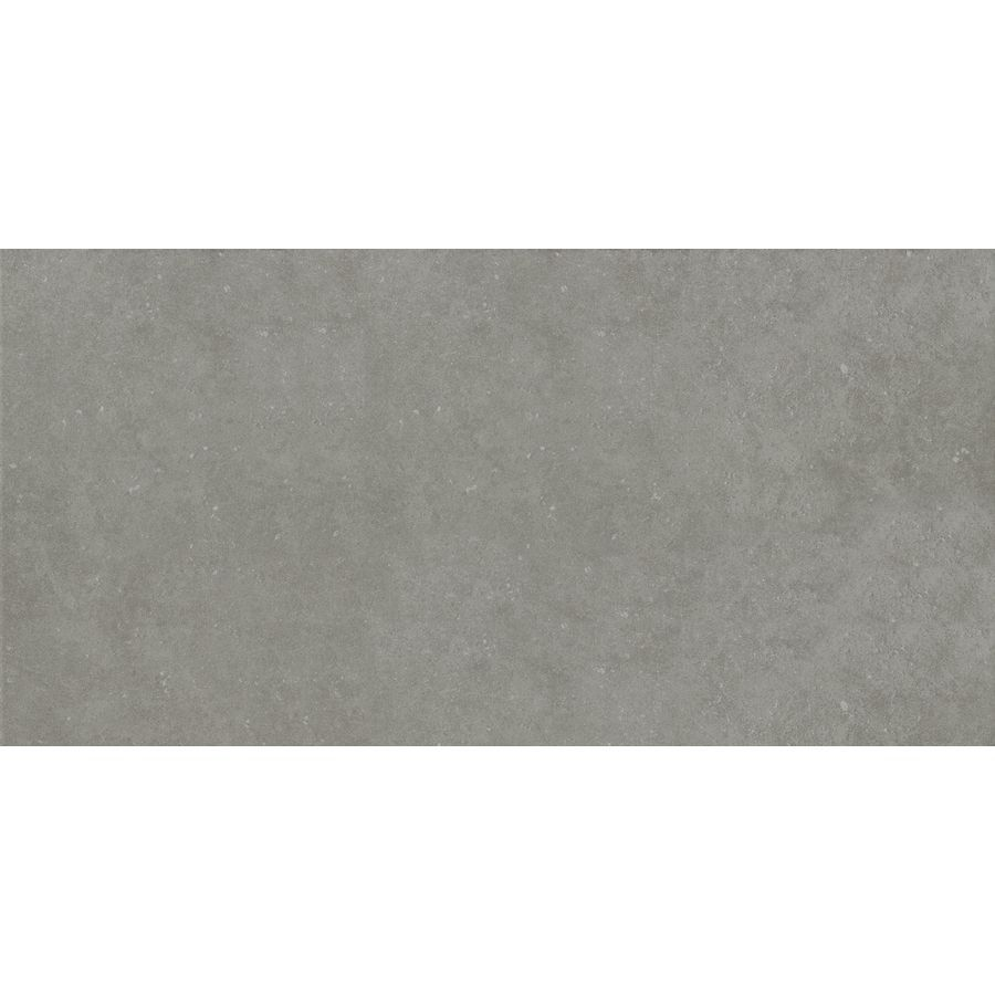 Shop Style Selections 12-in x 24-in Mitte Gray Glazed Porcelain ...
