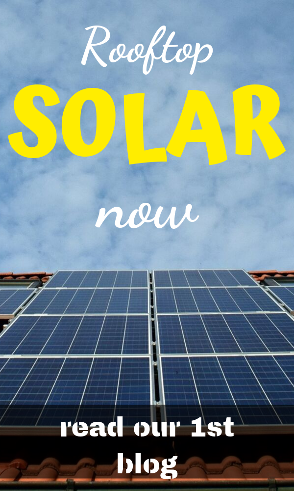 Read Our First Blog About Residential Rooftop Solar Panels Giving You A Little Insight Into The Industry Now And To With Images Solar Panels Solar Renewable Energy News