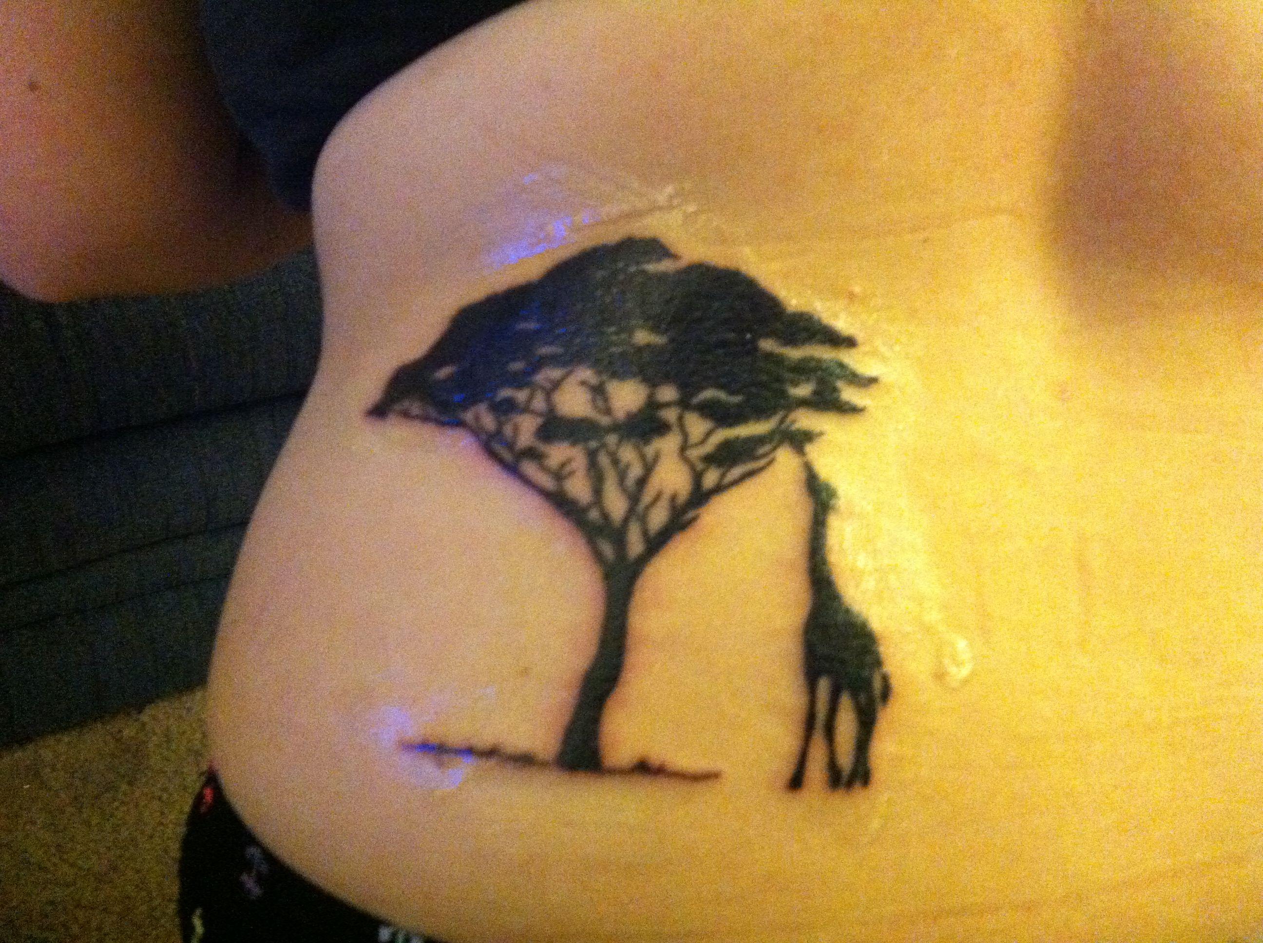 acacia tree tattoo beauty pinterest. Black Bedroom Furniture Sets. Home Design Ideas