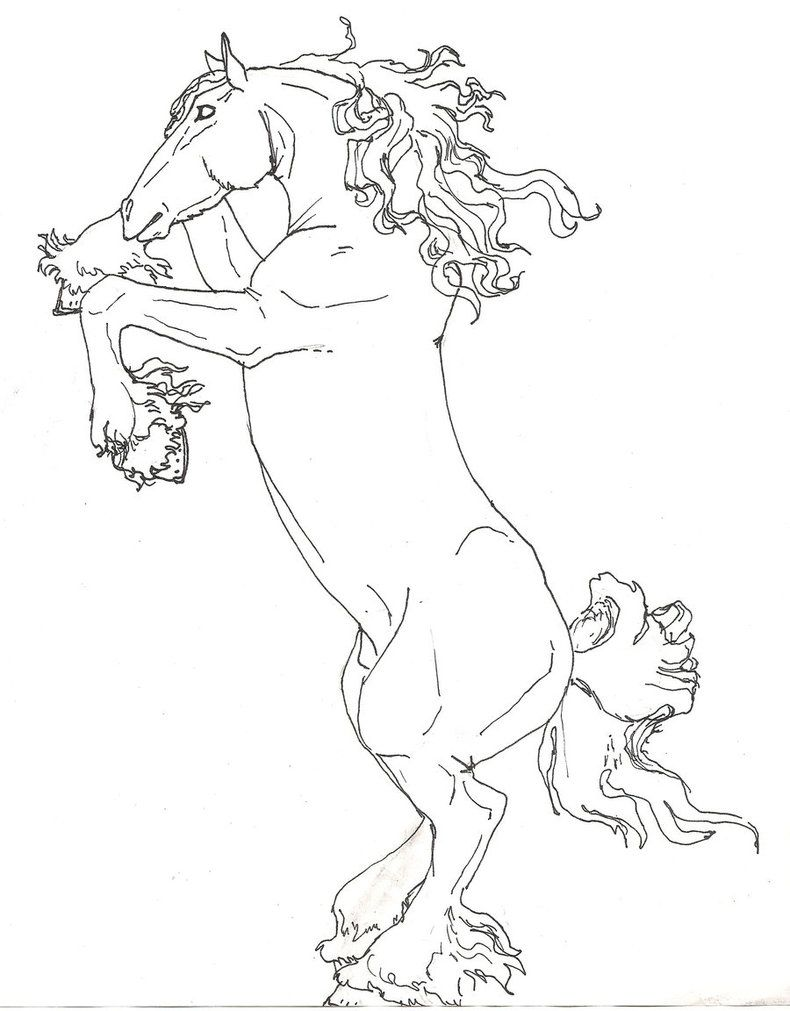 Draft horse coloring pages u pictures imagixs coloring