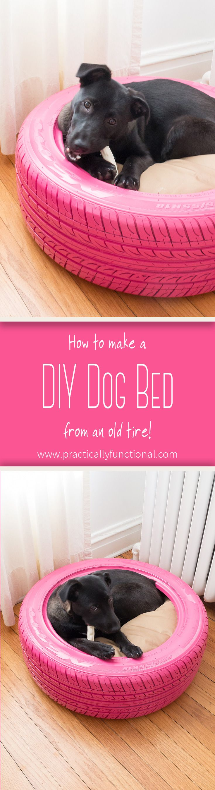 DIY Dog Bed From A Recycled Tire! Diy dog bed, Dog bed, Dogs