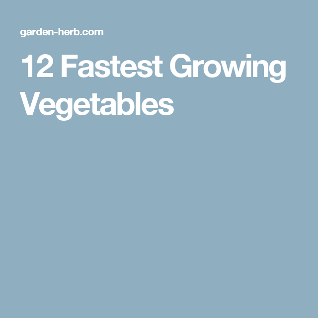 12 Fastest Growing Vegetables Fast Growing Vegetables 400 x 300