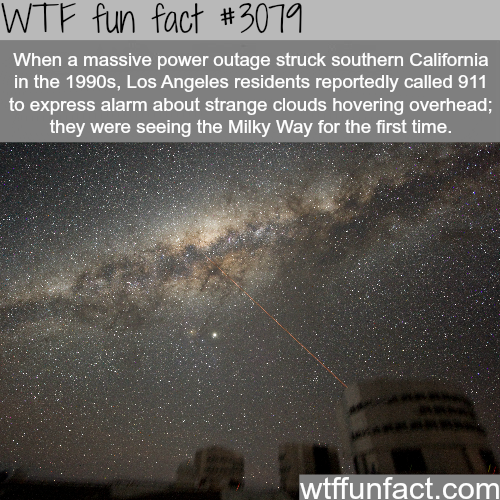Some Facts About Los Angeles Wtf Fun Facts Wtf Fun Facts Fun Facts Funny Facts