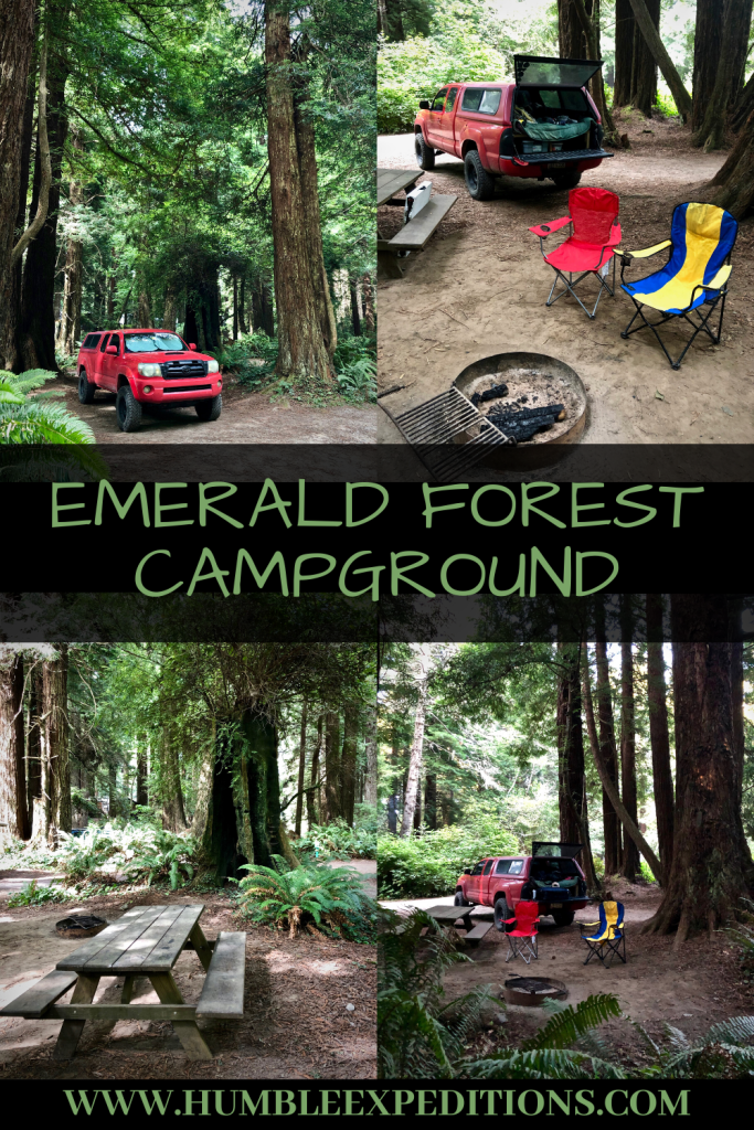 Emerald Forest Campground In Trinity California In 2020 Redwood Forest California Redwood National Park Shawnee National Forest