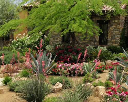 las vegas landscaping ideas bushes las vegas desert landscaping ideas pictures remodel and decor