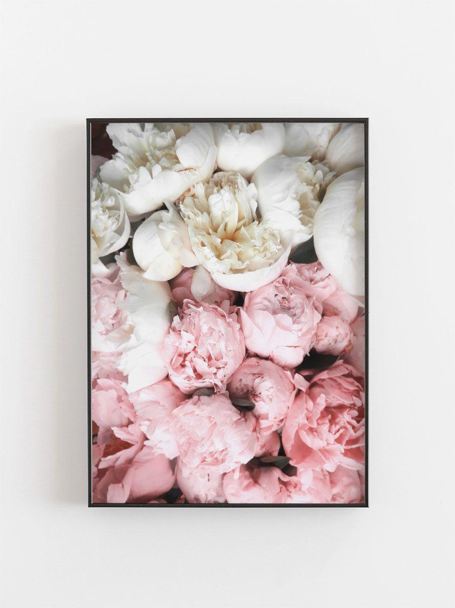 Garden wall art flowers  Peony PrintPeonies PrintFloral PrintPink Wall ArtFlowers Print