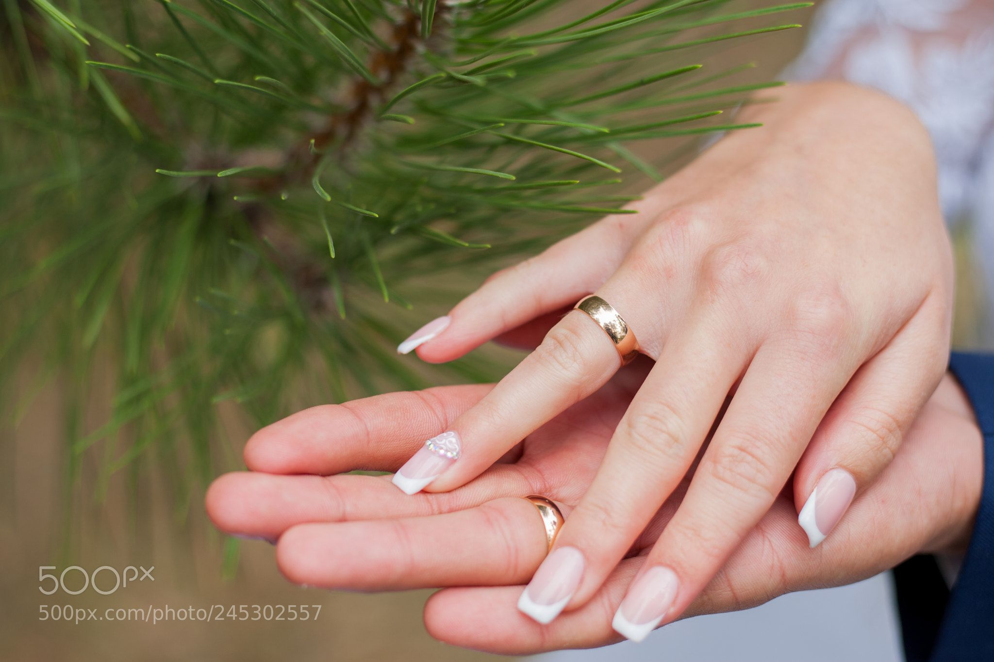 Wedding Bride Couple Groom Ring Love Engagement Finger Husband Marriage People White By Prochanphotostock Groom Ring Wedding Rings Engagement Finger