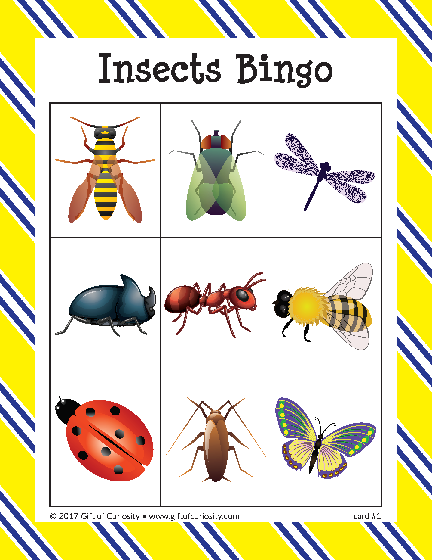 Insects Bingo Insects Preschool Insects Insects For Kids