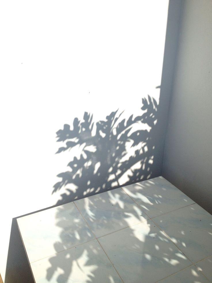 Summer   /woolandthegang/   Season . Summer   Shadow ...