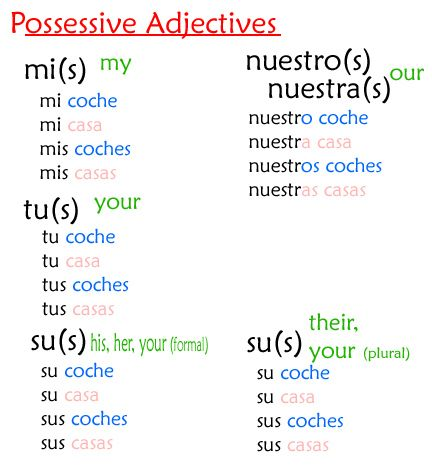 Worksheets Possessive Adjectives Spanish Worksheet possessive adjectives pinterest spanish and search copy