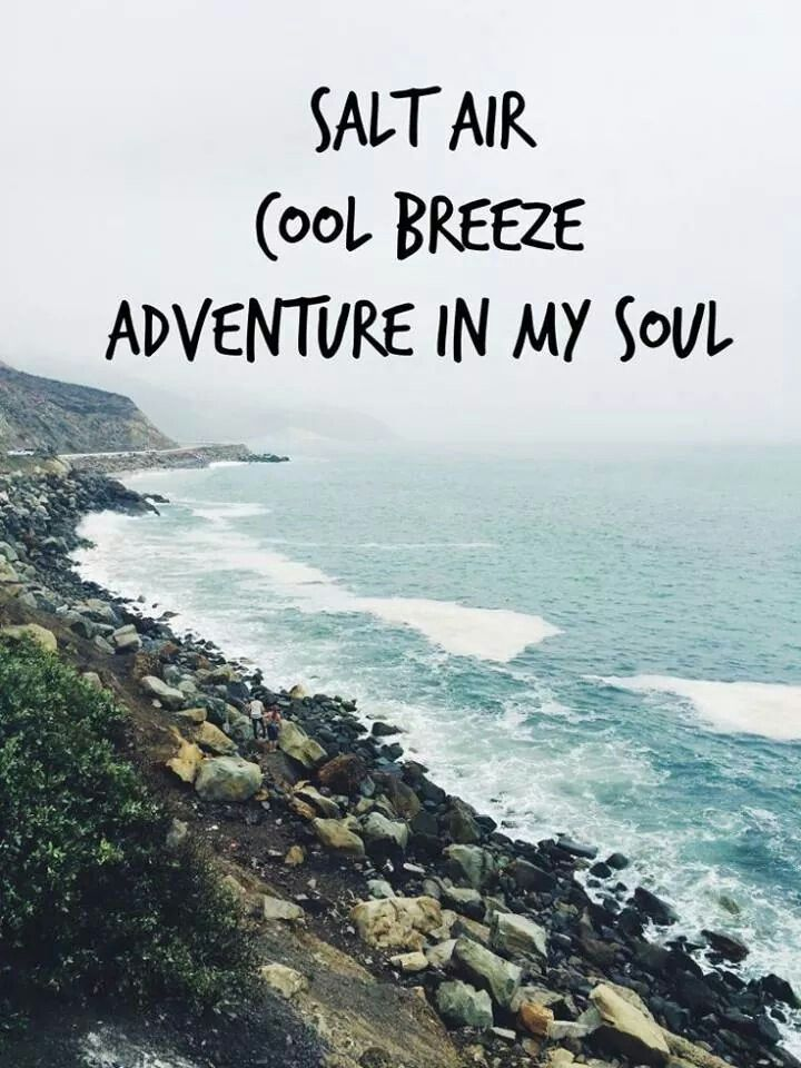 Travel Quotes On Goa - Travelling Guide