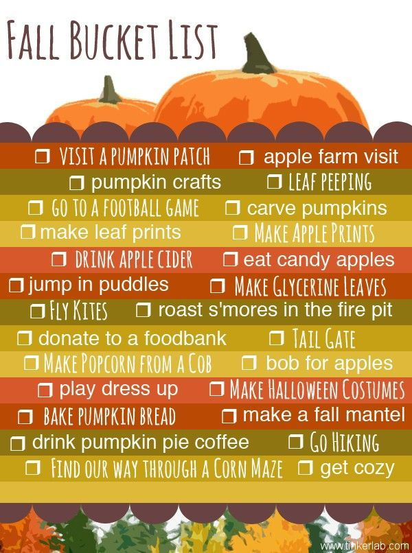 Fall Bucket List  How fun! Could be framed and then use a dry erase marker to check off the items each year! Good way to always get the most out of Fall! -Follow Driskotech on Pinterest!