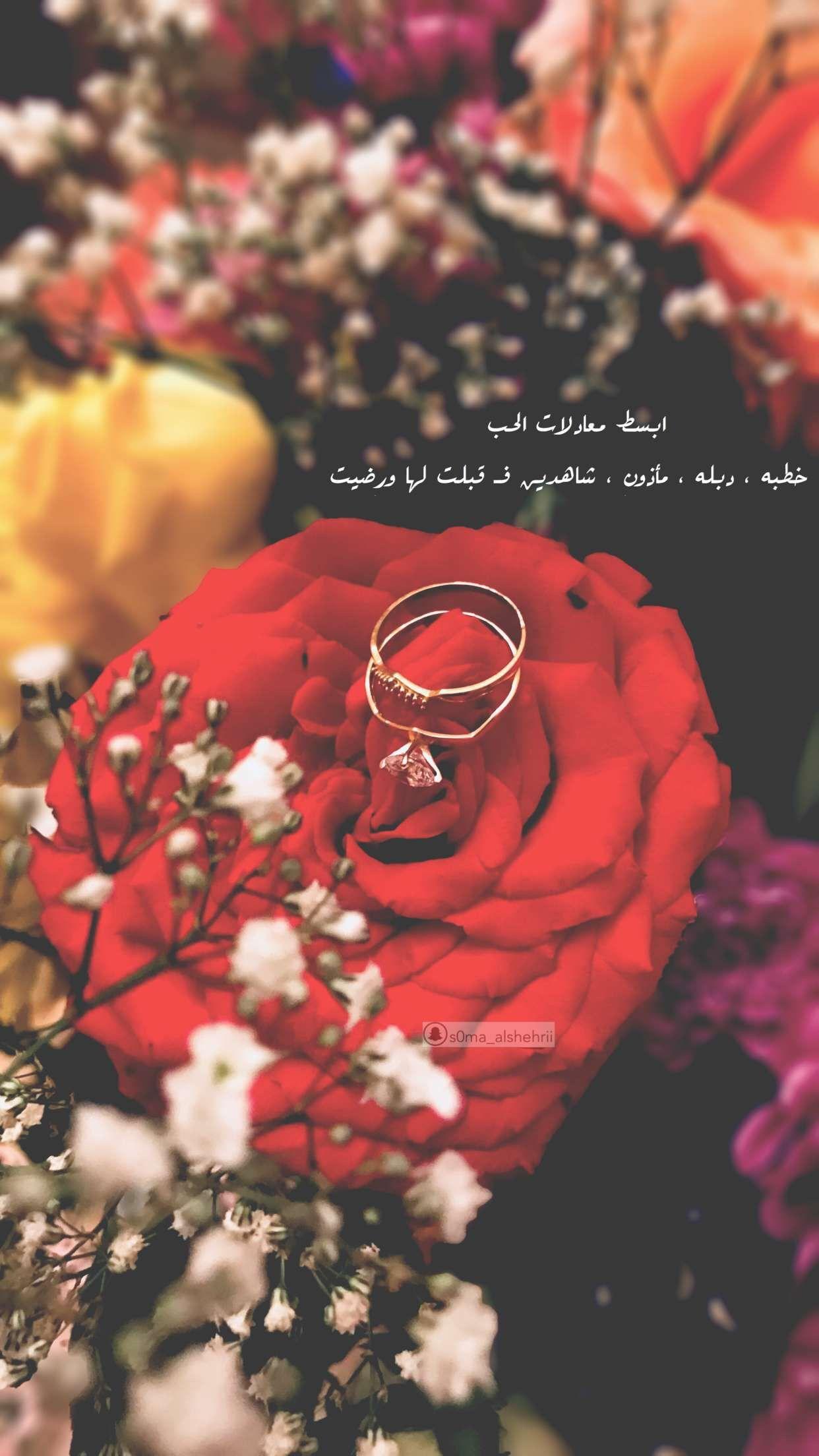 Pin By Samyaa Alshehri On My Photo Girly Jewelry Diamond Wedding Bands Bage