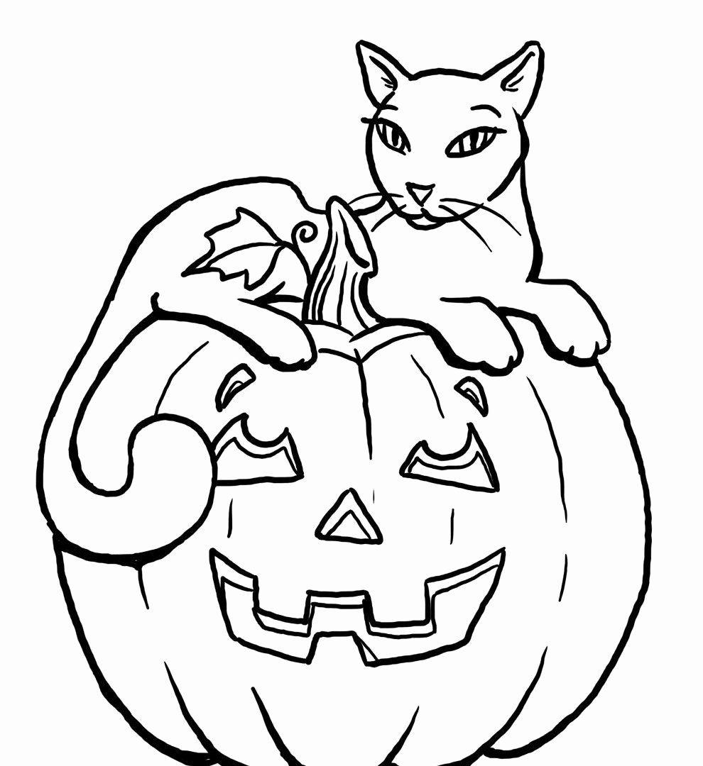 Halloween Pumpkins Coloring Sheets Best Of Coloring Books Free Halloweeng Pages For Kids Adults Gambar Warna Gambar Kartun