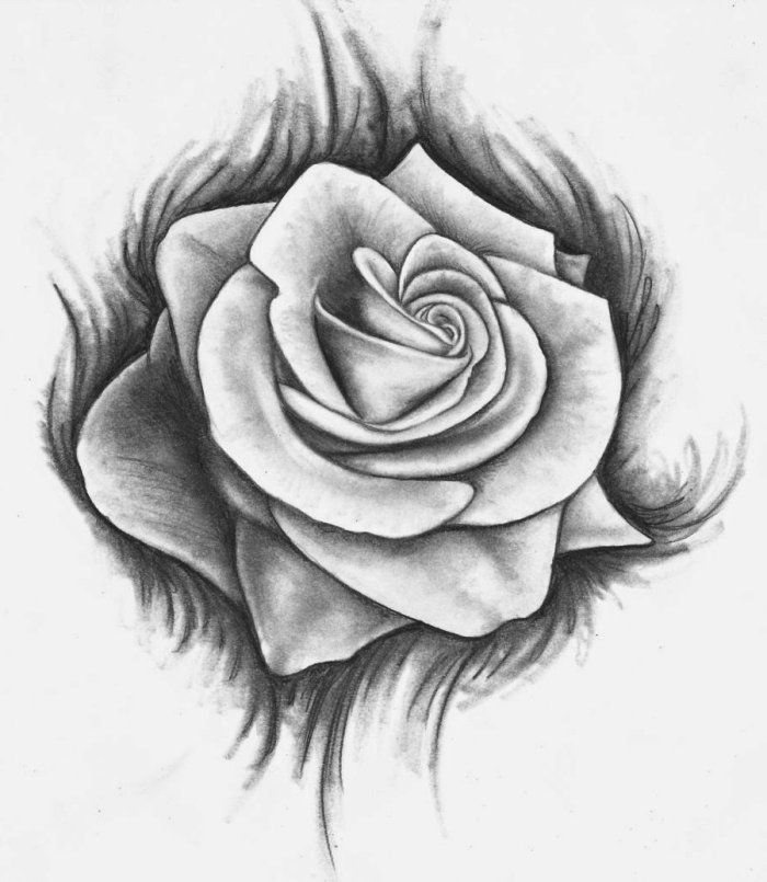 1001 mod les et conseils pour apprendre comment dessiner une rose aquarelles drawings art - Dessin facile rose ...
