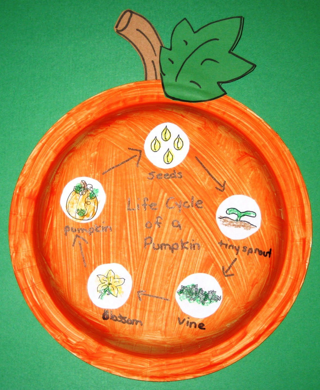 This Is A Neat Wear To Display The Pumpkin Life Cycle Jodi From The Clutter Free Classroom