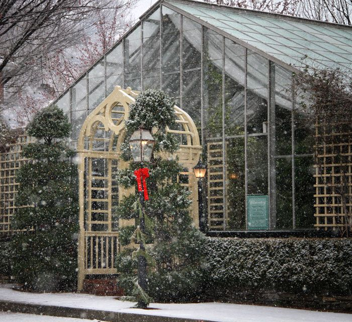 The Conservatory Is An All-glass Tropical Gardenhouse