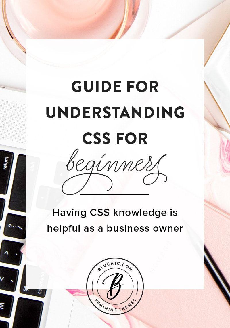 Understanding Css For Beginners