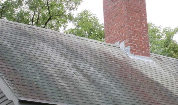 Removing Algae From A Roof Roof Cleaning Roof Home And Garden