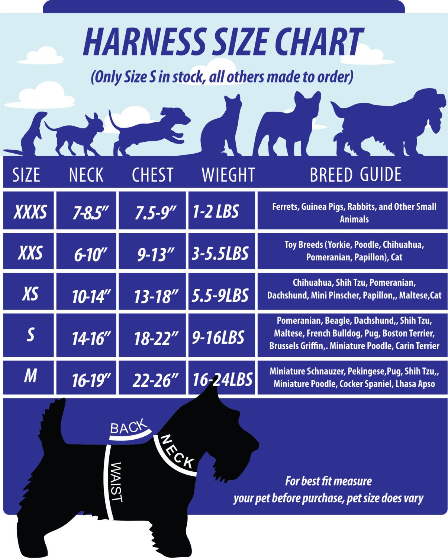 Xxxs m size harness dogcat black dragon halloween costume fits xxxsm size harness dog black dragon halloween by octostitches 2200 nvjuhfo Choice Image