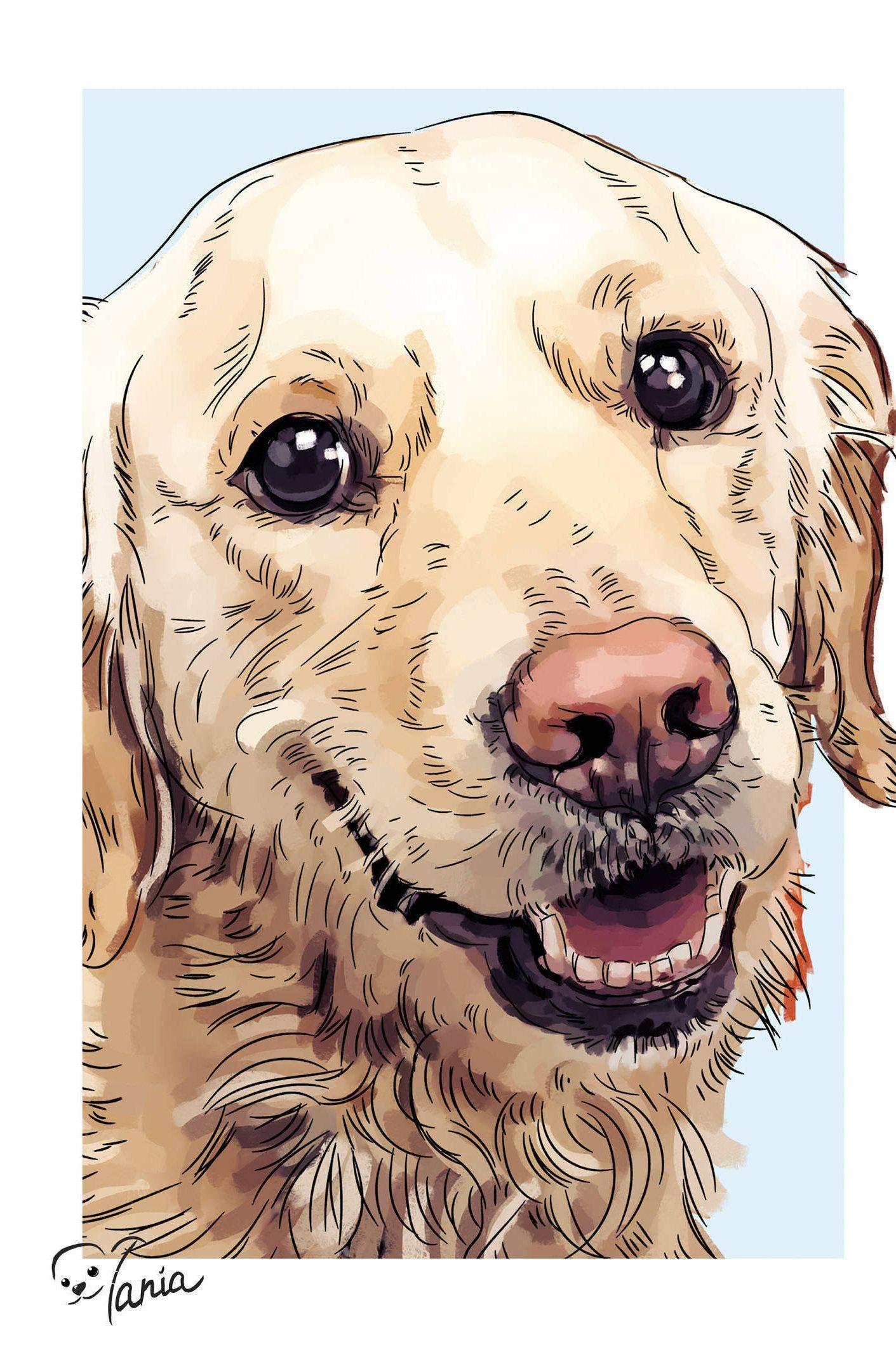 Golden Retriever Dog Custom Pet Portrait Labrador Retriever Etsy