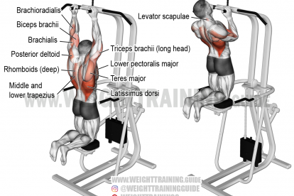 Machine-assisted close neutral-grip pull-up exercise