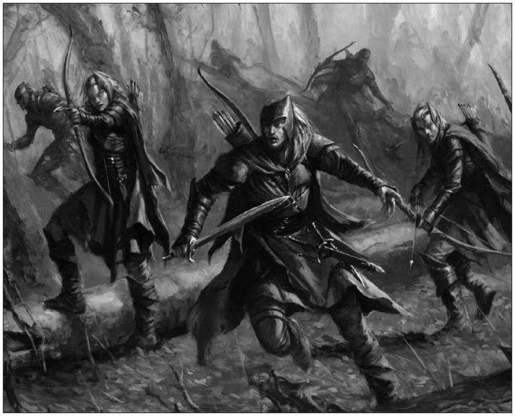Silvan Elves. LotR art.