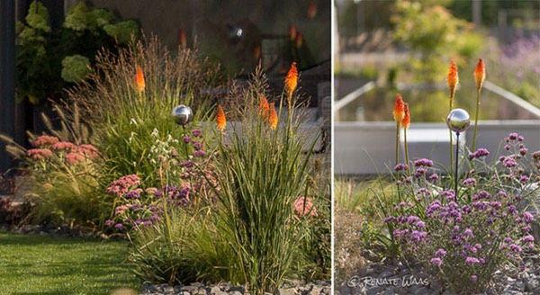Blumenbeet modern Garten Pinterest Modern and Garten