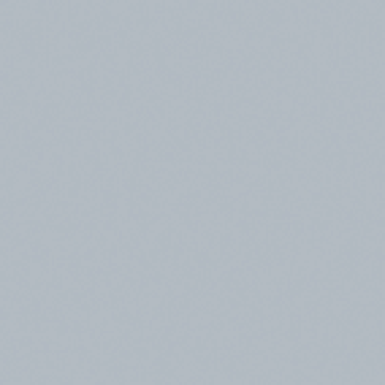 De kleur grijs van een dolfijn spelen met water pinterest grijs water en kleur - Kleur van een volwassen kamer ...