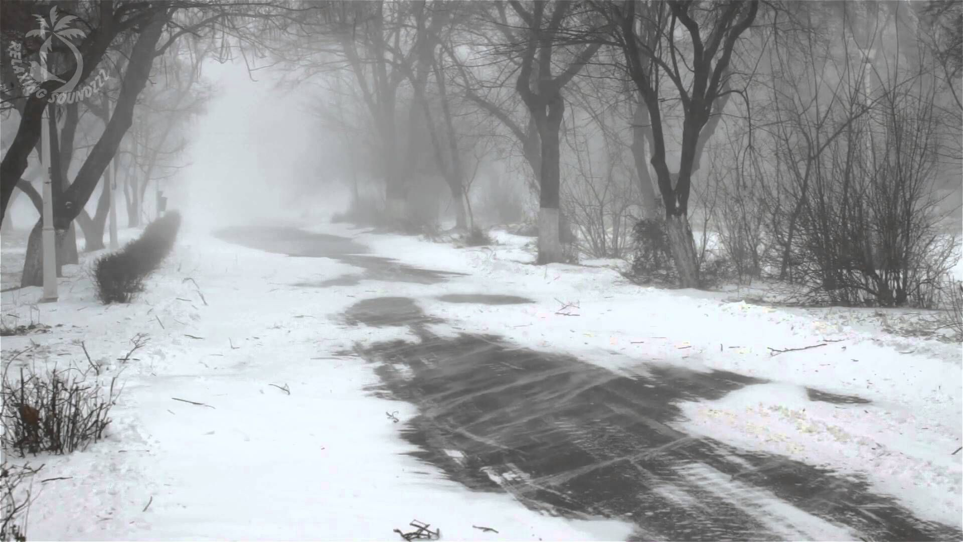 Winter Storm Sound - 8 Hours Of Ambient Snowstorm, Blizzard Sounds, Heavy Wind For Relaxation. Use this to tune out the snoring! This will help you relax and...