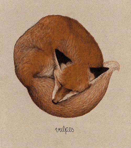Actegratuit find more creatures and stuff on my blog fox tattoo in 2018 pinterest renard - Dessin renard ...