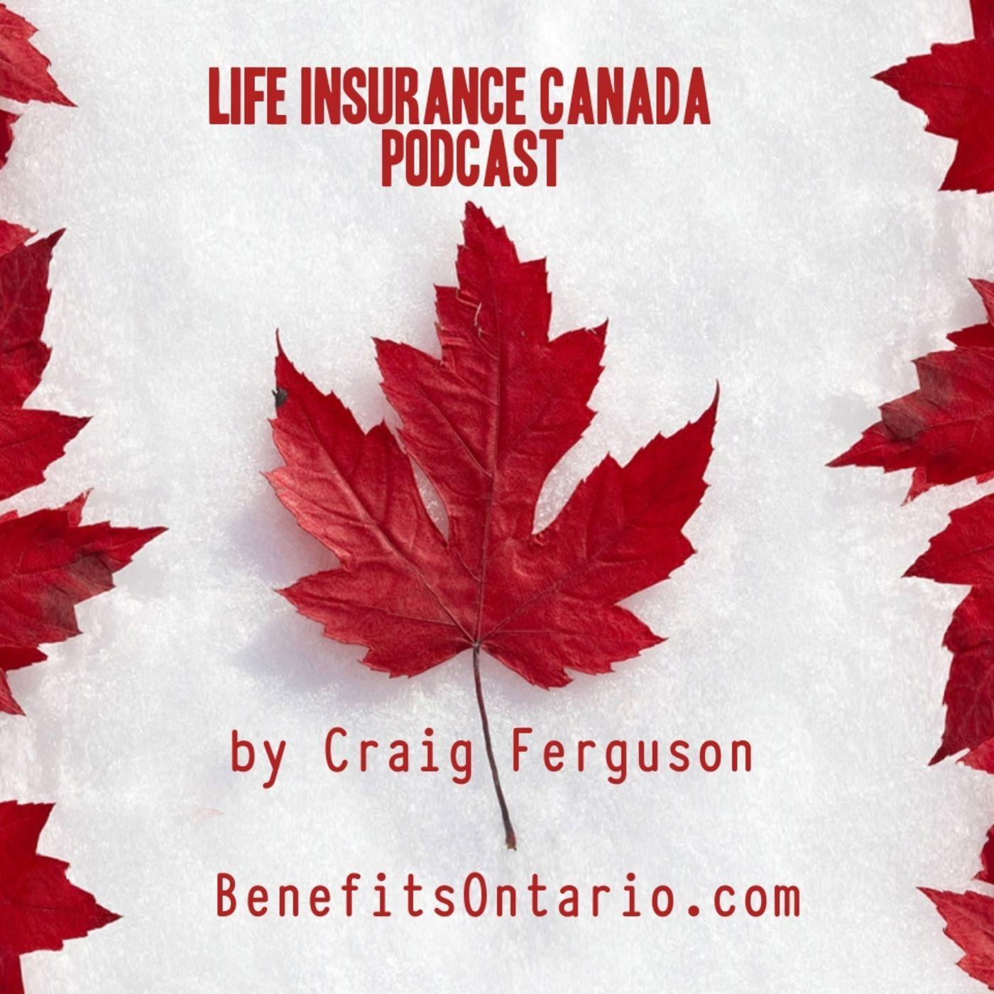 Life Insurance explained in plain language Life