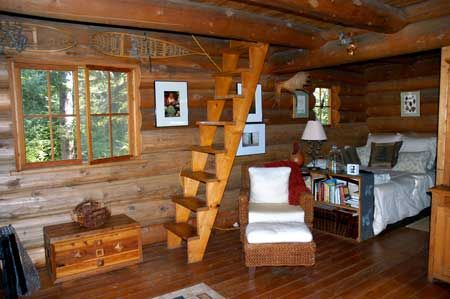 Part Of Cabin Interior The Ladder To Loft Is Nice