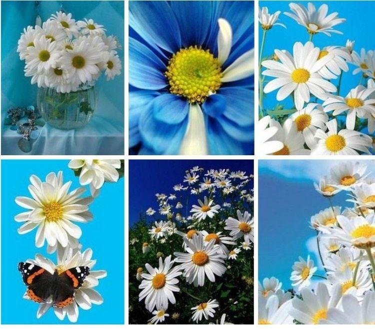 Gallery.ru / Фото #29 - Просто красивые фотографии-5 ...