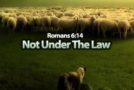 Not Under The Law ~ short video | Hebrew roots, Jesus, Romans