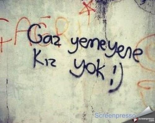 #ocupygezi #direngezi