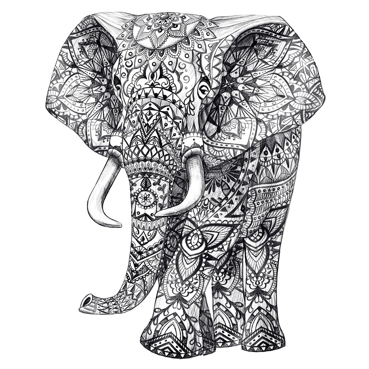 elephant pen hand drawing aztec pattern detail art graphic