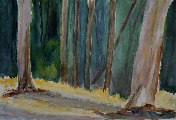 Eucalyptus Grove, China Camp State Park,  tom simmons, landscape, marine, china camp state park, beach, san pablo bay, san francisco bay, watercolor, impressionistic watercolor, california state park, greeting card
