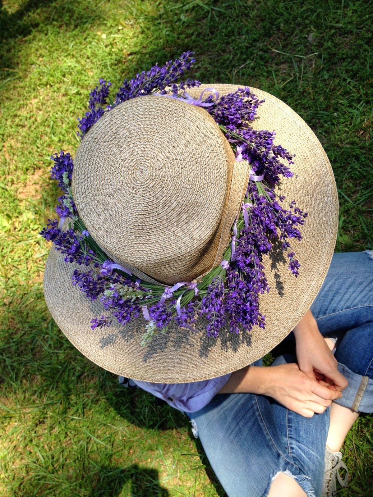 Sunshine Lavender Farm: 2014 Lavender Harvest Celebration
