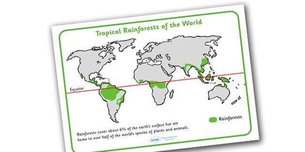 Tropical Rainforests World Map Reference Sheet Rainforest Topic