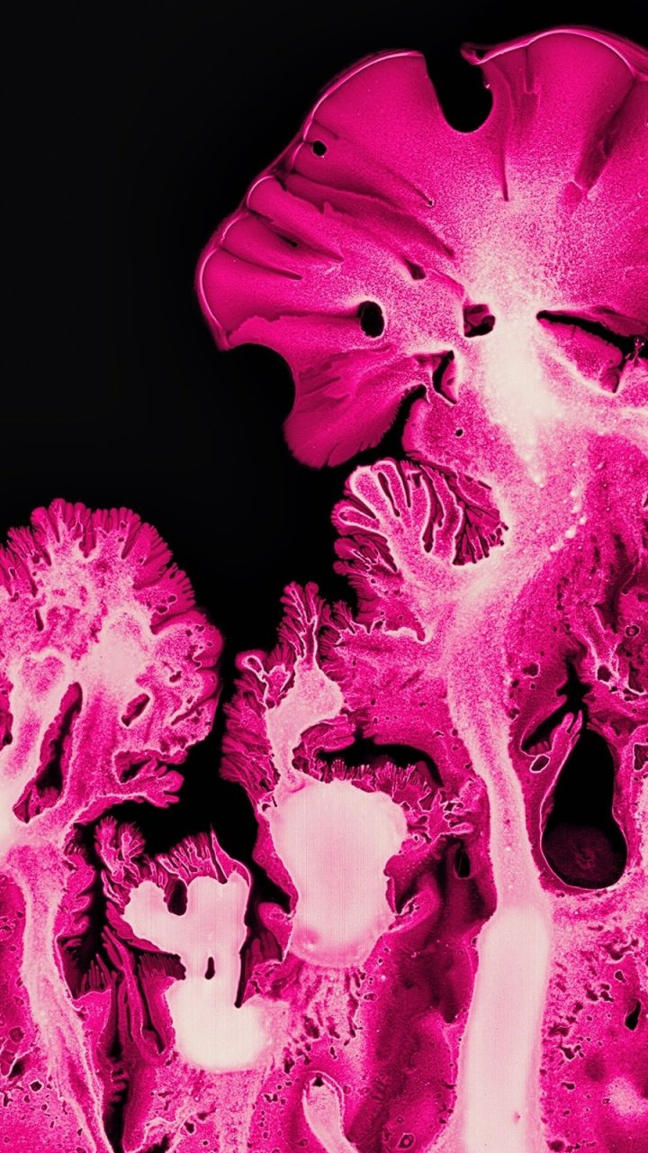 Pink coral, ink art, pattern, macro, 720x1280 wallpaper