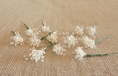 Flores secas Tiaras de flores para el pelo Pinterest - flores secas