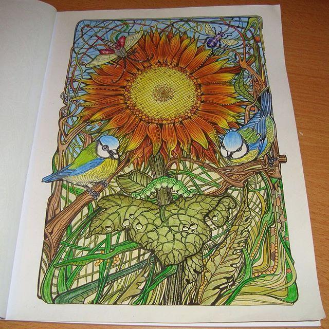 cadre champêtre • septembre 2016 • #colouringbook #manicbotanic #zifflin #irinavinnik #fabercastell #polychromos #mycreativeescape