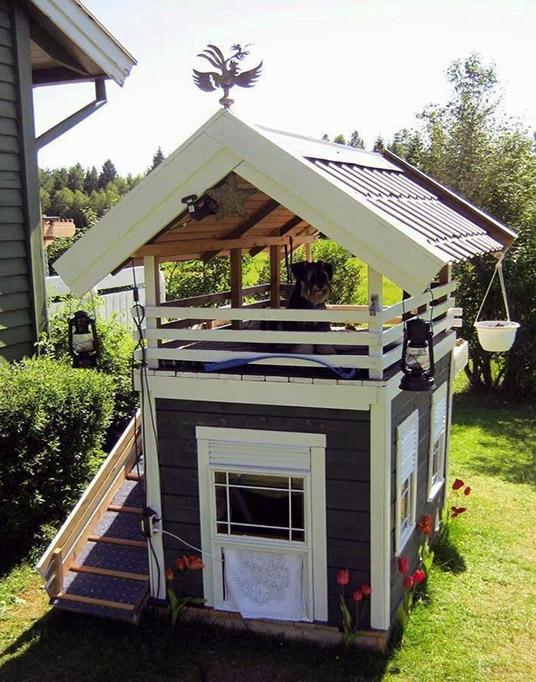 14++ Luxury dog house plans image ideas