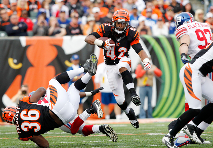 Watch Cincinnati Bengals vs Pittsburgh Steelers Live