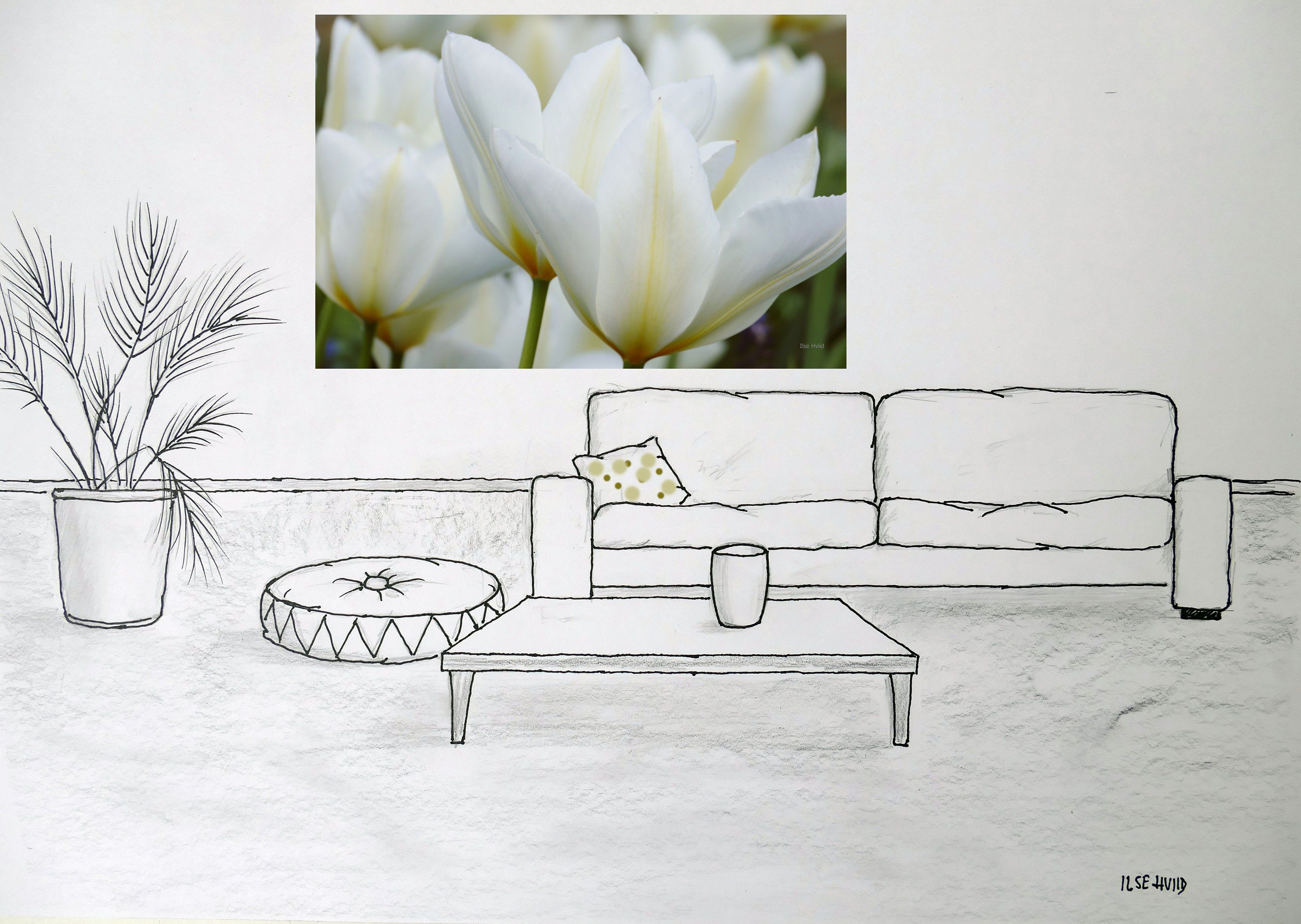 White Tulips Photograph Instant Digital Download
